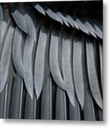 Cormorant Wing Feathers Abstract Metal Print