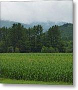 Corn Among The Mountains Metal Print