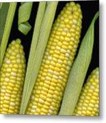 Corn On The Cob I  Metal Print