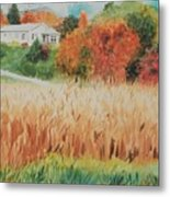Cornfield In Autumn Metal Print