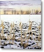 Cornfield In Winter Metal Print