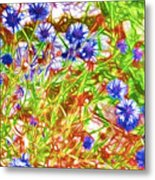 Cornfield With Cornflowers Metal Print