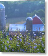 Cornflower And Barn Metal Print