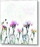 Cornflowers Watercolor  Metal Print