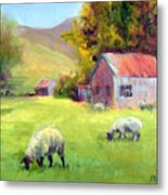 Coromandel New Zealand Sheep Metal Print