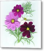 Cosmos Bouquet Metal Print