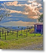 Costa Rica Cow Farm Metal Print