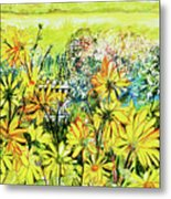 Cottage Gate Seen Through Sun Daisies Metal Print