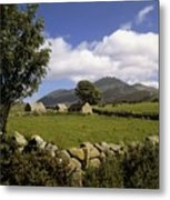 Cottages On A Farm Near The Mourne Metal Print