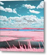 Cotton Candy Marsh Metal Print