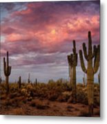 Cotton Candy Pink Sonoran Sunrise  Metal Print