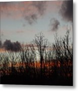 Cotton Clouds  Metal Print