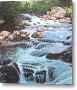 Cotton Wood Creek #4 Metal Print