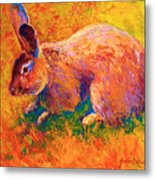 Cottontail I Metal Print by Marion Rose