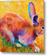 Cottontail II Metal Print