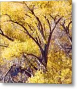 Cottonwood Golden Leaves Metal Print