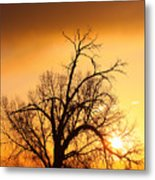 Cottonwood Sunrise - Vertical Print Metal Print