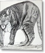 Cougar Metal Print by Daniel Shuford