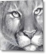 Cougar Spirit Metal Print