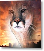Cougar View Metal Print