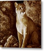 Cougar Wait Until Dark  Metal Print