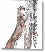 Cougars Tree Metal Print