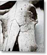 Country Afterlife Metal Print