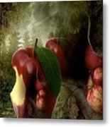 Country Apple 2 Metal Print