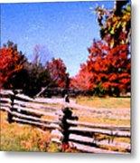 Country Autumn Metal Print