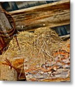 Country Duplex Metal Print