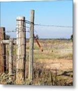 Country Gate Metal Print