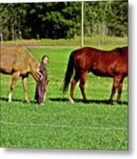 Country Girls Metal Print