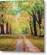 Country Lane - A Walk In Autumn Metal Print