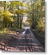 Country Lane In Autumn 2 Metal Print