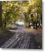 Country Lane In Autumn 4 Metal Print