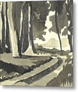 Country Lane In Evening Shadow Metal Print
