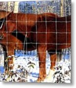 Country Pals Metal Print