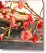 Country Quince Metal Print