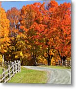 Country Road Autumn Metal Print