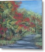 Country Road II Metal Print