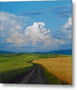 Country Road Metal Print by Pavel  Filatov