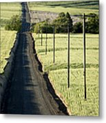 Country Road, Wheat Fields Metal Print