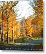 Country Roads Metal Print