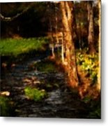 Country Stream Metal Print