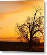Country Sunrise Metal Print