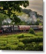 Country Train Ride Metal Print