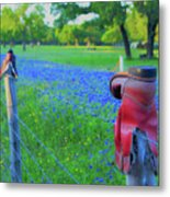Country Western Blue Bonnets Metal Print