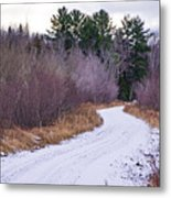 Country Winter 13 Metal Print