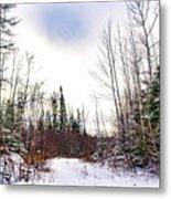 Country Winter 5 Metal Print