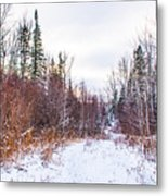 Country Winter 6 Metal Print